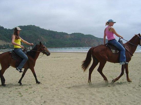 Hostal Plaza Real: Paseo a caballos