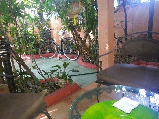 Casa Valeria Boutique Hotel:                   vu depuis la chambre