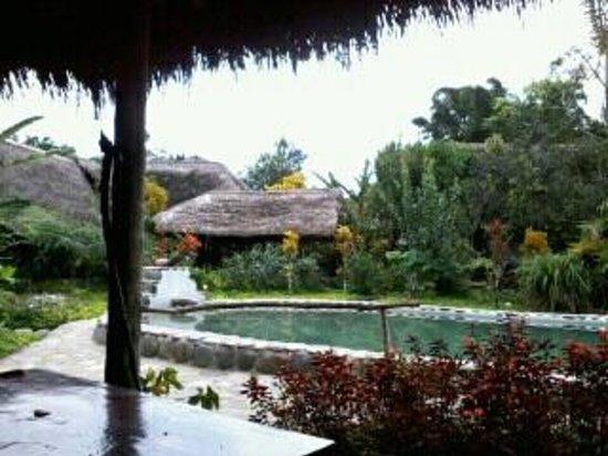France Amazonia:                                                       vista desde el comedor