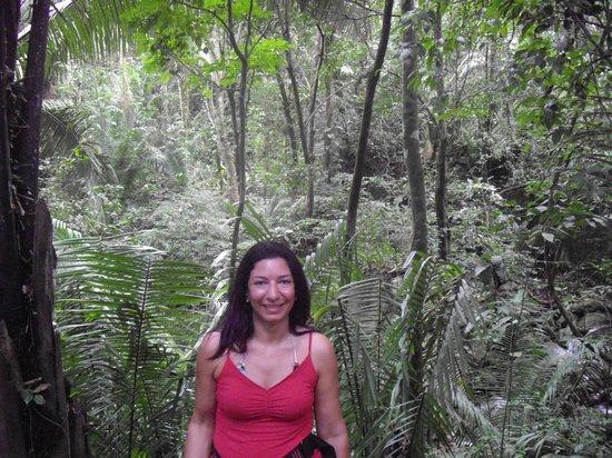 Telamar Resort :                                     Dans la jungle pour tyrolienne
