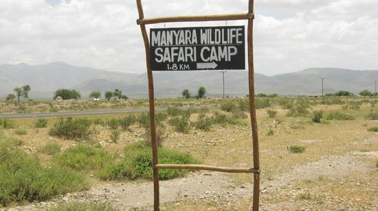 Manyara Wildlife Safari Camp:                   entré du camps