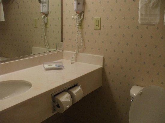 Country Inn & Suites By Carlson, Orlando Airport: roomy bathroom
