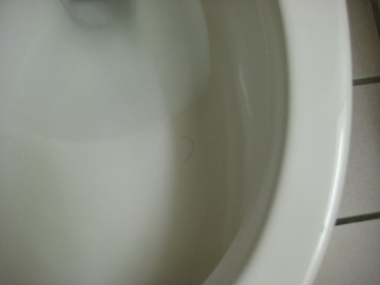 Comfort Suites Goodlettsville:                                     Hair in the toilet too
