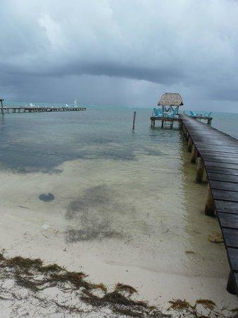 Colinda Cabanas:                   storm