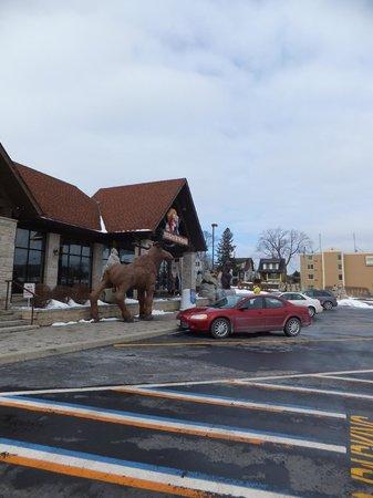 Souvenir City Headquarters: Massive moose