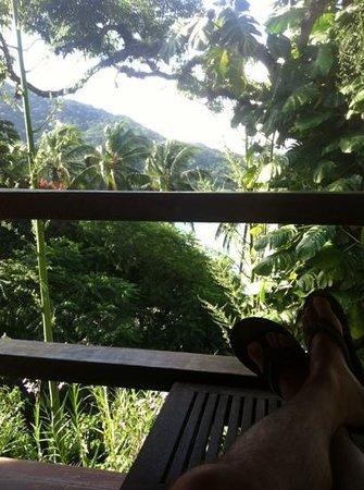 Atlantica Jungle Lodge:                                     descanso asegurado