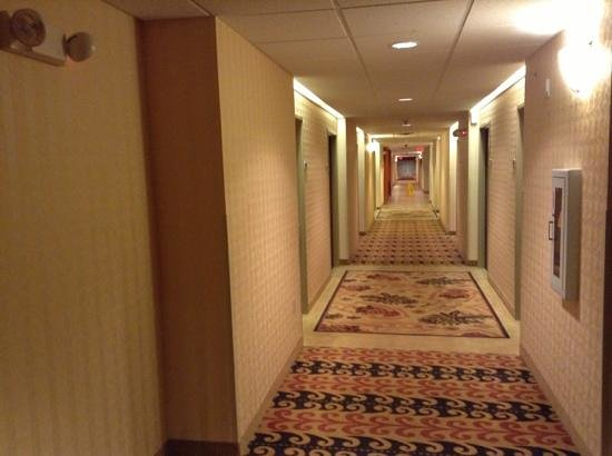 Comfort Inn And Suites :                   downstairs hallway