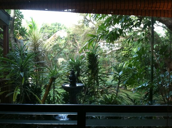 Honu Kai B&B:                   View from bedroom of Mala Hale Bungalow