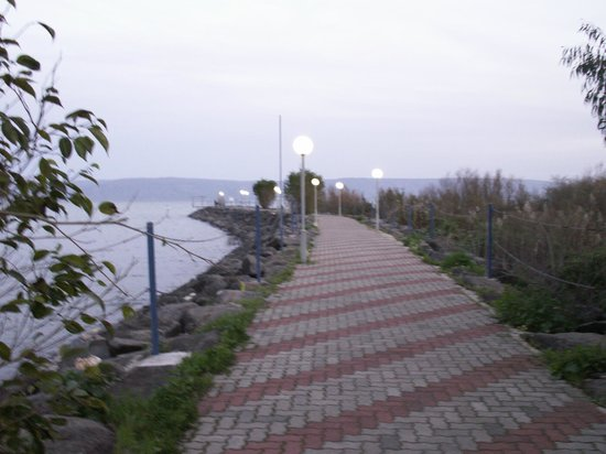 Nof Ginosar Hotel:                   The stroll to the lake