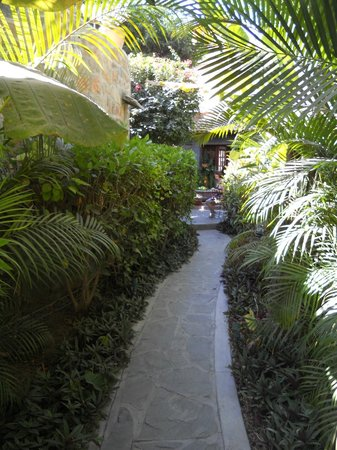 Todos Santos Inn:                   path to restaurant from one of the courtyards