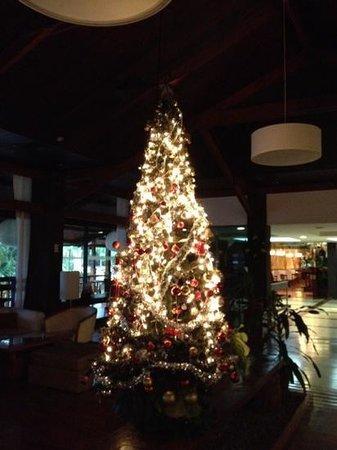 Raices Esturion Hotel:                   ロビーに飾られていたクリスマスツリー