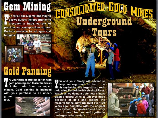 Consolidated Gold Mine: Our brochure 1 of 2