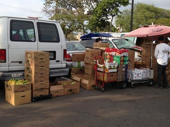 Kona Farmers Market :                   produce!