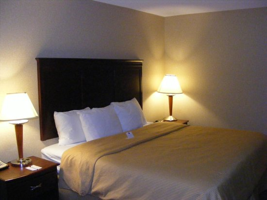 Clarion Inn & Suites Airport :                                     Comfortable bedding