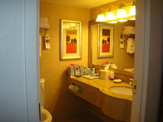 Wingate by Wyndham Tampa / USF:                                     Bathroom