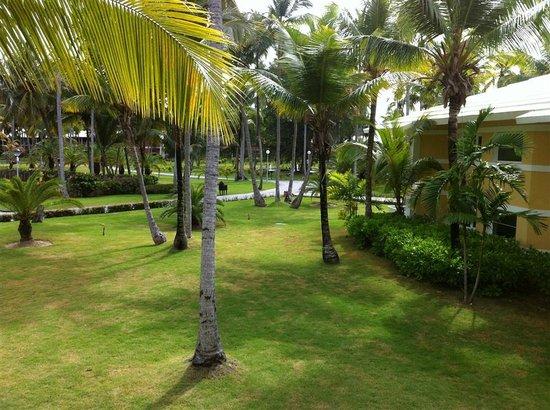 Grand Palladium Punta Cana Resort & Spa:                   .