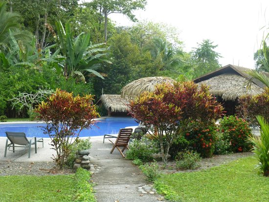 Suizo Loco Lodge Hotel & Resort:                   view of pool area