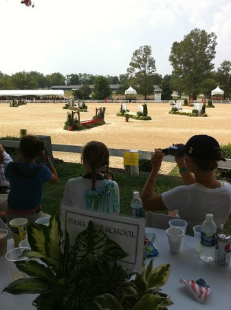 Menemsha Inn and Cottages: the horse show