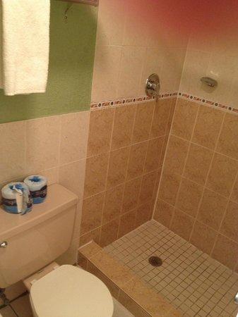 Econo Lodge:                   small, lavatories are outside
