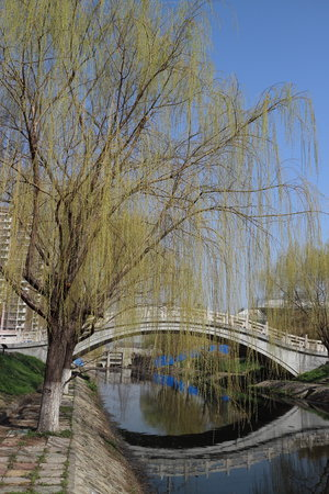 Nanqi Hotel :                                     River banks near the hotel