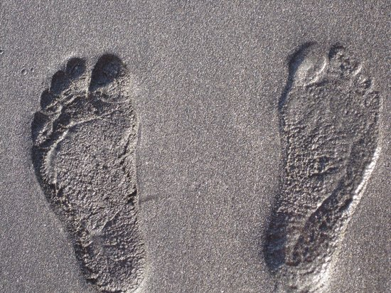 Playa Hermosa:                   foot prints in the sand
