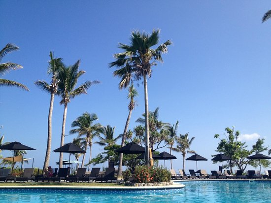 Sofitel Fiji Resort & Spa:                   View from a pool chair