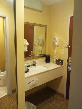 BEST WESTERN PLUS Greensboro Airport Hotel: dressing area