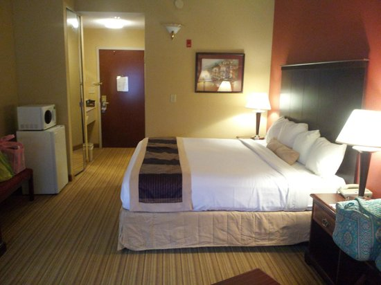 Best Western Plus Greensboro Airport Hotel: suite from couch