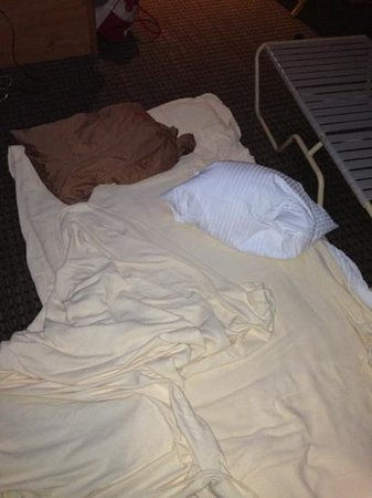 La Quinta Inn & Suites Moscow Pullman:                   The floor they made me sleep on