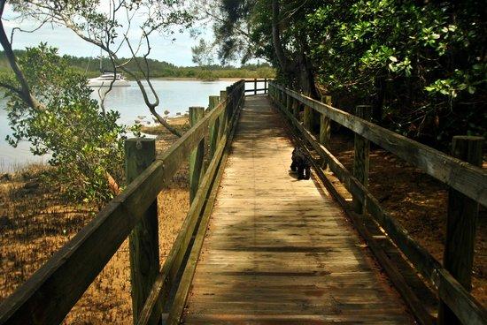 Marcel Towers:                   Enjoying a walk along the boardwalk