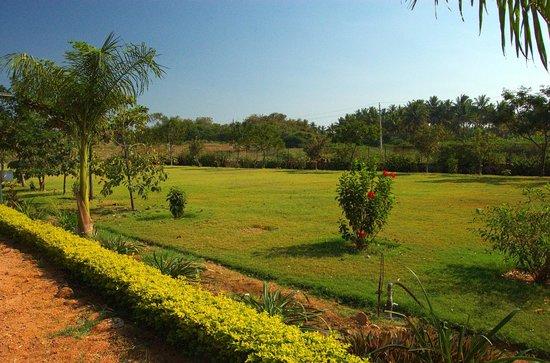 Hotel Mayura Bhuvaneshwari Kamalapur:                   Lawns