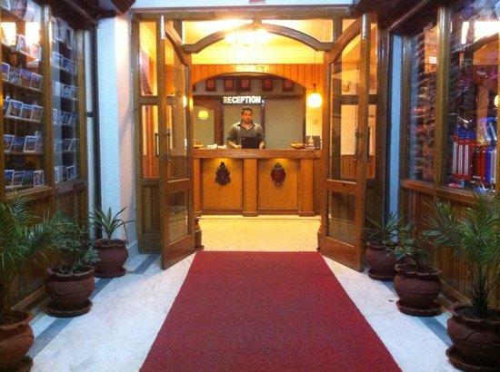 Festoon Hotel: entrance