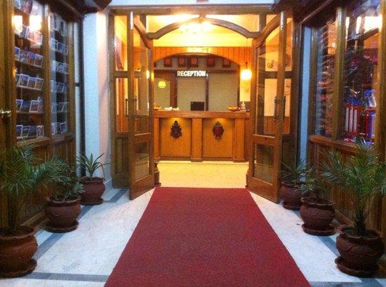 Festoon Hotel: lobby