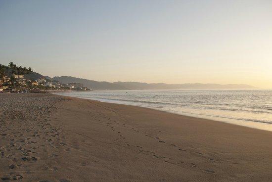 Bed & Pizza- youth hostel:                   Puerto vallarta playa