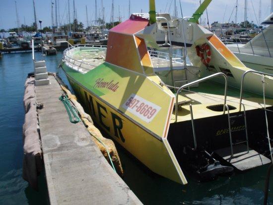 Honolulu Screamer:                                                       The boat