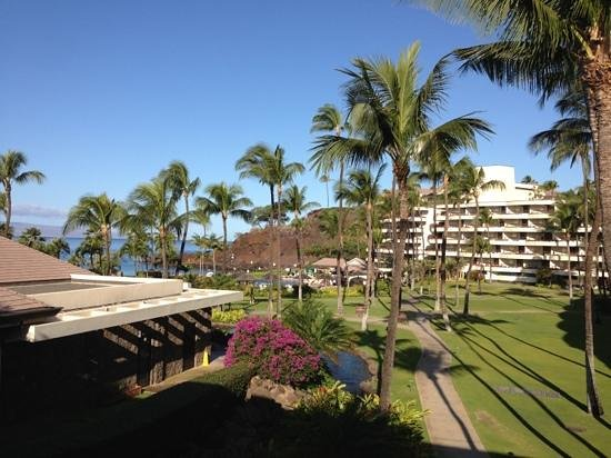 Sheraton Maui Resort & Spa:                   beautiful setting.