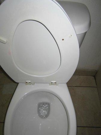 Empire Inn:                   broken/stained toilet