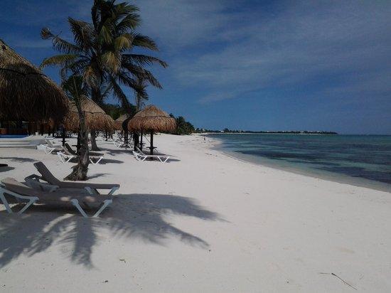 PavoReal Beach Resort Tulum照片