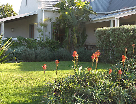 Swellendam Country Lodge: colourful garden