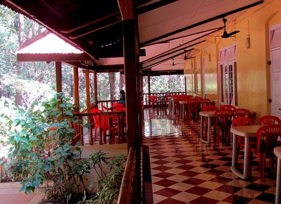 Hotel Woodlands Matheran:                   verandah