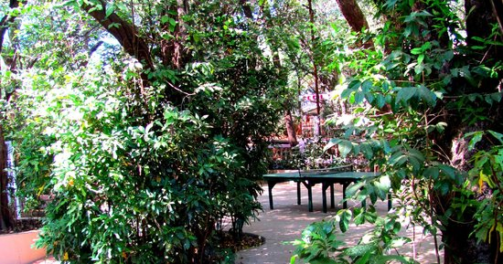 Hotel Woodlands Matheran:                   TT board
