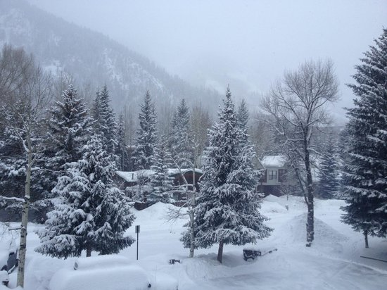 Aspen Silverglo:                   View from balcony - powder day!