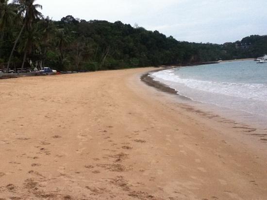 Sansuko Ville Bungalow Resort :                   beach