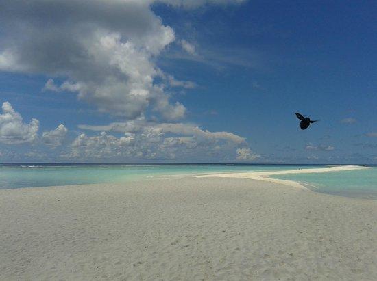 Kuramathi Island Resort:                   End of the island ...