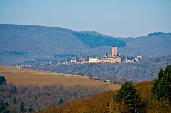 Burg Lichtenberg:                   View of castle from afar, near Kusel, Germany