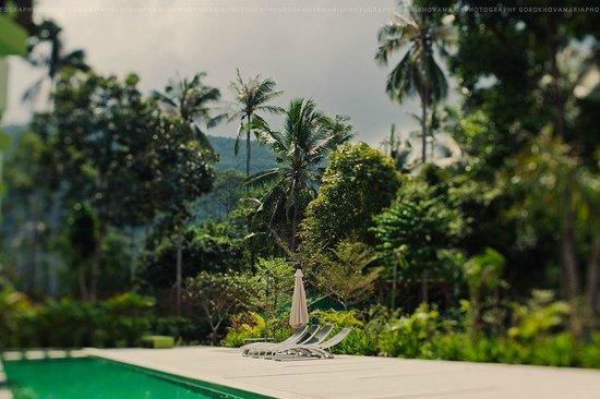 Panalee Resort :                                                       pool1