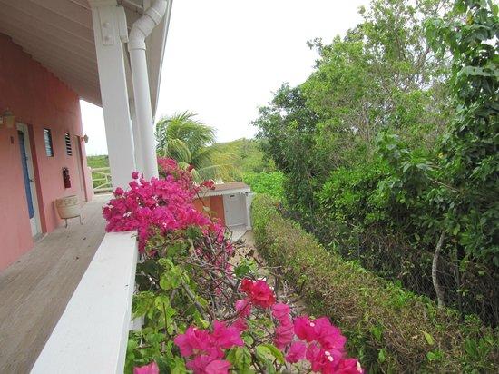 Caribbean Paradise Inn照片