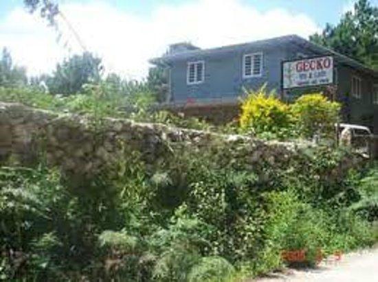 Gecko Inn & Cafe