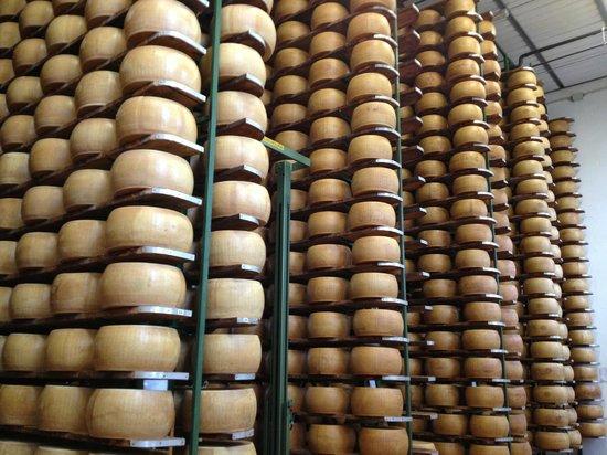 Parmatourguide :                   Parmigiano Reggiano