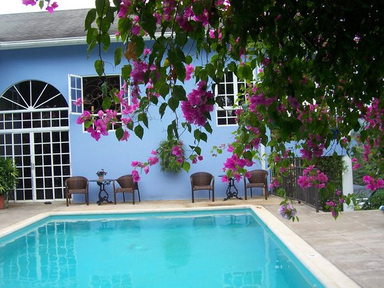 The Blue House Boutique Bed & Breakfast:                                     Flowers by the pool